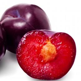 Prun Black Diamond - Pomi fructiferi - AgroDenmar.ro