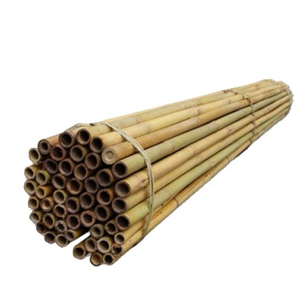 Araci bambus 240 cm / 22-24 mm - Accesorii gradina - AgroDenmar.ro
