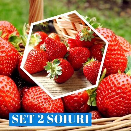Capsuni - set 2 soiuri - Arbusti fructiferi - AgroDenmar.ro