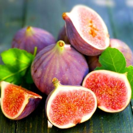 Smochin Mov - dulceata - Arbusti fructiferi - AgroDenmar.ro