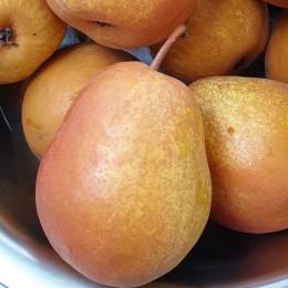 Para lui Nita - Pomi fructiferi - AgroDenmar.ro