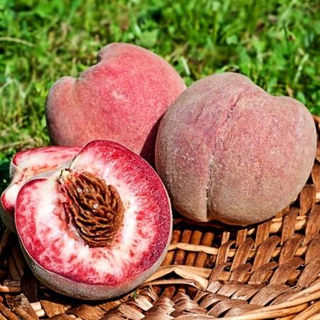 Piersic Rubino - Pomi fructiferi - AgroDenmar.ro