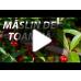 Maslin de toamna - Arbusti fructiferi - AgroDenmar.ro